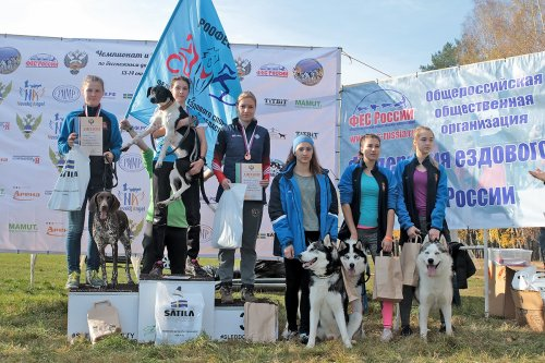 RIPR Supports Russian Sled dog Sport